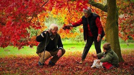 Grandparents and grandchild