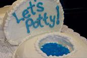 potty cake