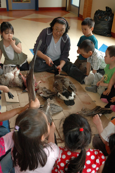 An elder shows children at Mikijuq daycare in Kangisujuaq how to pluck a goose. (PHOTO BY SARAH ROGERS)